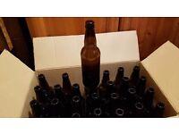 500ml empty beer bottles swap for 330ml homebrew