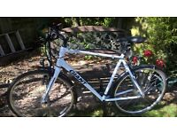 GIANT XL Escape Hybrid 2013 Road Bike , excellent condition, smooth ride.