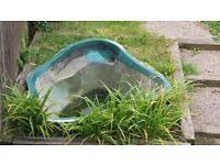 Fiberglass pond for sale