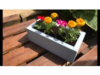 Hand painted, hand finished, filled wooden planters