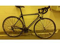 Cannondale Synapse Hi-Mod Carbon Road Bike -SRAM Red Mavic Ksyrium Wheels,specialized,trek,giant