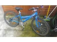 "Girls Trek 220 mountain bike with 24"" wheels"
