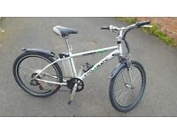 Electric bike forsale