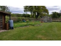 """""""allotment"""" area for use on private land with use of greenhouse in delightful location"""