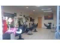 barbers equpment miror , desk, head wash 5 chairs