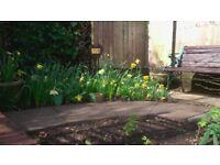 garden top soil free to collect