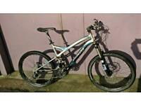 Specialized stupjumper bike