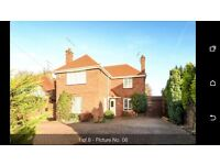 Spacious 4 Bedroom detached house for rent, good school catchment, proximity to university, 1600pcm