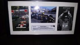 Ayrton senna limited edition picture no8 of 162 ever made