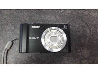 Sony W800 20.01MP Compact Camera with 5x Optical Zoom