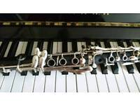 Piano and clarinet lessons for everyone!!