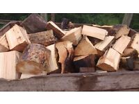 Firewood logs,hardwood and softwood