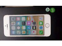 iPhone 5s 16g