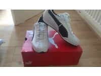 Puma lady or teenagers boy golf shoe new size 5