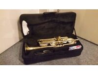 Brand New Republic Trumpet For Sale