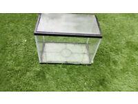 small glass fish tank