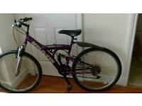 Mountain bike female