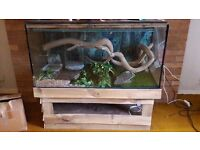 Large reptile or fish tank with stand