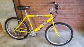 Raleigh Max Aero Adult Mountain Bike - As New Condition