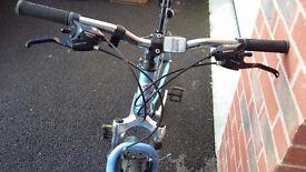 Blue Mountain Bike