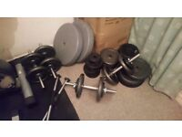 Weights, benches, barbell, Dumbell, squat rack