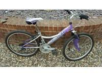 Girls/Womans mountain Bike Forsale