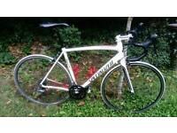 Specialized Allez Sport Road Bike 56.5cm