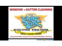 WINDOW CLEANER / DRIVER