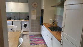 Double Room Available, Great Location