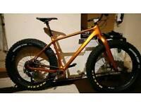 Custom built full carbon fat bike
