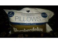 2 Pack Pillows