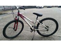 Raleigh free ride girls/womens bike