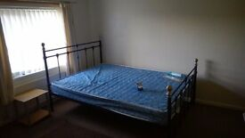 Large double sized room for single occupancy, full time employed only.