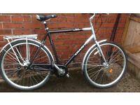 Giant Bike (Large frame 60cm) Comfortable and Strong Dutch Style Bike