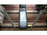 Pro Fitness Bench