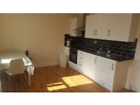 Spacious 2 Bedroom Apartment with Open Plan Kitchen and Living Room To Rent in Elephant and Castle