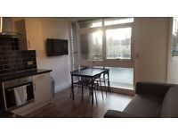 Lovely single room with living room close to Streatham Hill