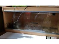 Vivarium for sale. Used but in great condition. Light sockets etc all included