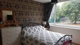 A Bright Large room To Let-15 minutes' walk from Luton Airport/Luton Airport Parkway Train Station
