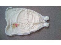 Baby Boy or Girl Disney Winnie the Pooh 0-6 Months Sleeping Bag