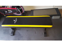 Marcy Bruce Lee Signature Flat Weight Bench