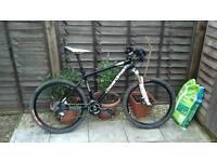 Broadband man's bike