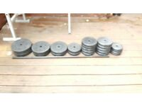 Platic Coated Weight Plates
