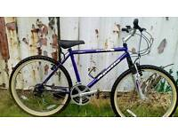 Here's a very nice teens or adults bike for sale