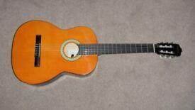 Clifton Guitar - Unused