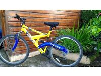 Emmelle Ascent Mountain bike blue and yellow 21 speed full suspension