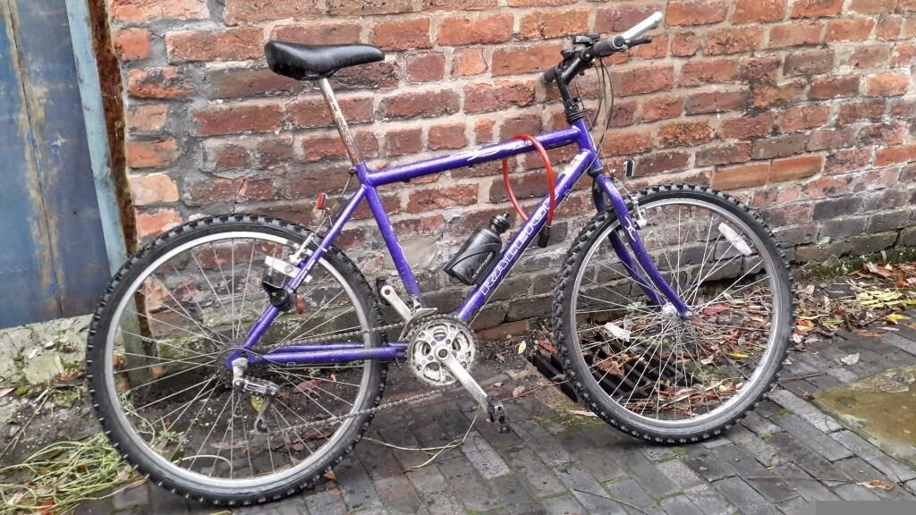 MUST GO - Raleigh adult Mountain bike