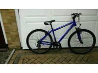 Mountain bike APOLLO
