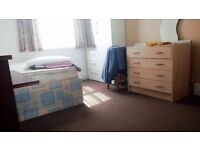 Double room for 1 person in sharing house with only 2 ohers & 3 cats,own street parking,living room
