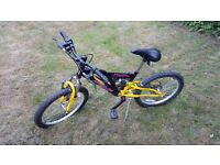 Childs Bike (13 inch can adjust up to 20 inches) with adjustable gears